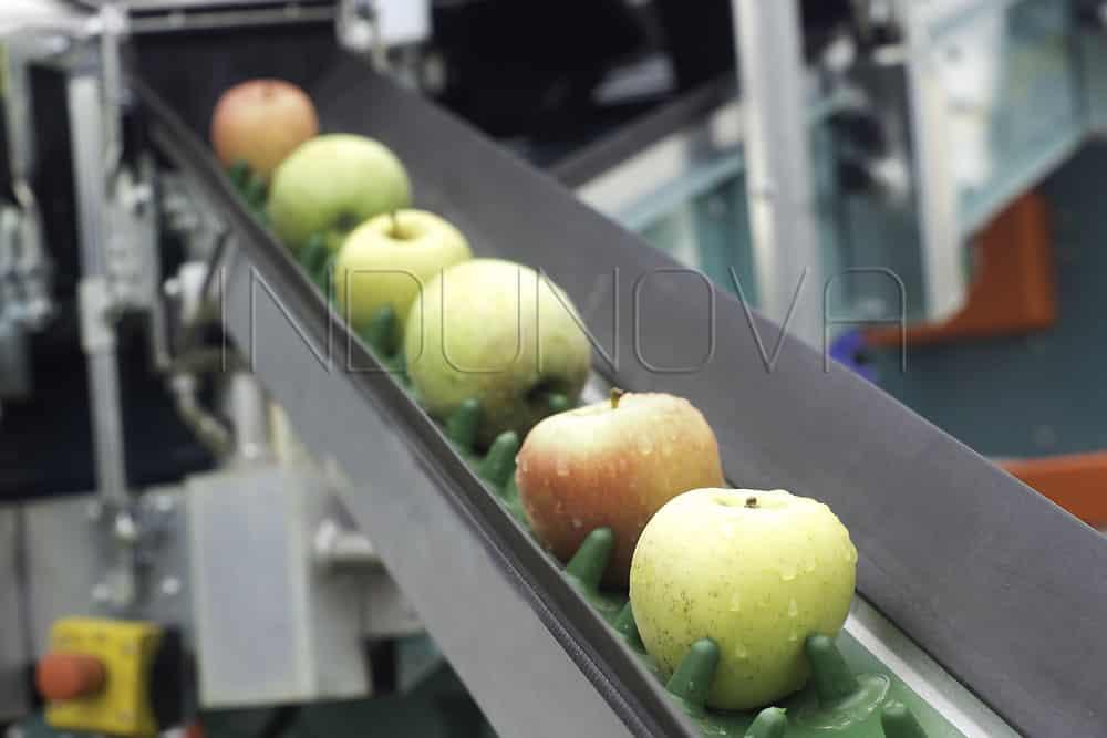 Limpieza criogénica en sector alimentario